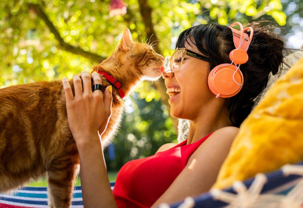 Cat hammock2